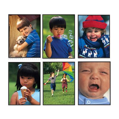 Frank Schaffer Publications/Carson Dellosa Publications Photographic Learning Cards Verbs