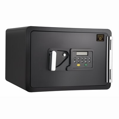 Pentagon Fire Prince Electronic Digital Home Fire Safe