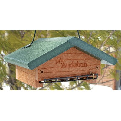 Audubon/Woodlink Go Green Suet Bottom Feed Style in Green
