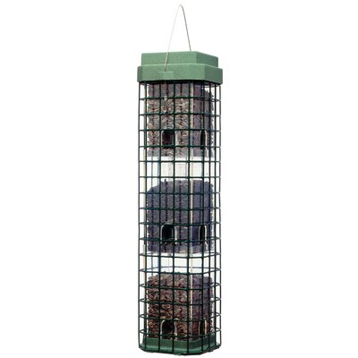 Woodstream Wildbird Evenseed Squirrel Dilemma Feeder