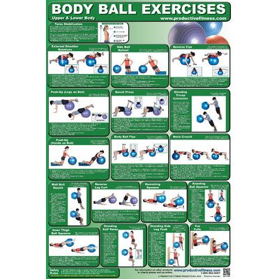 Productive Fitness Publishing Body Ball Poster - Upper and Lower