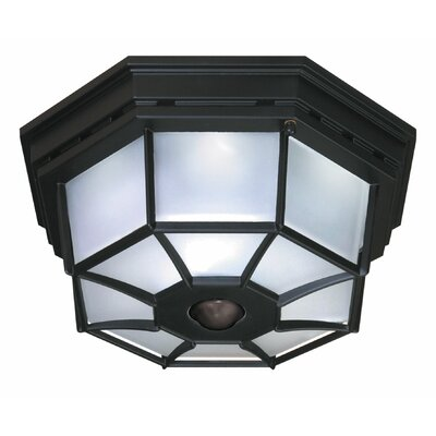 heath zenith 4 light octagonal flush mount with motion sensor. Black Bedroom Furniture Sets. Home Design Ideas