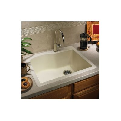 "Swanstone Swanstone Classics 25"" x 22"" Single Bowl Kitchen Sink"