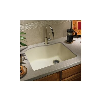 "Swanstone Swanstone Classics 24"" x 21"" Single Bowl Kitchen Sink"