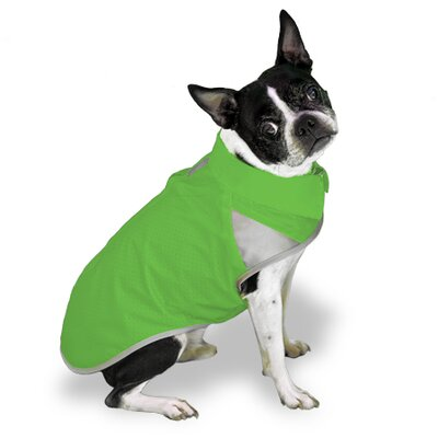 Scooter's Friends Inc Spring Slicker Dog Coat in Lime Sherbet