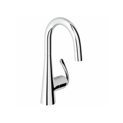 Grohe Ladylux Pro Single Handle Single Hole Kitchen Faucet with Watercare and Lever Handle