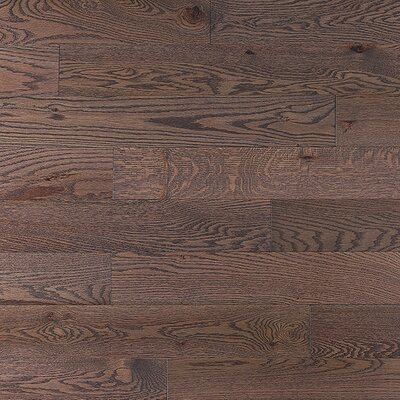 "Jasper Stained Semi-Gloss 4-1/4"" Solid Red Oak Flooring in Charcoal Light/Folk"