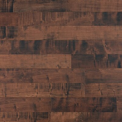 8mm Maple Laminate in Chocolate