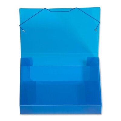 """Lion Office Products Translucent Document Files, 2"""" Capacity, Letter, Blue or Clear"""