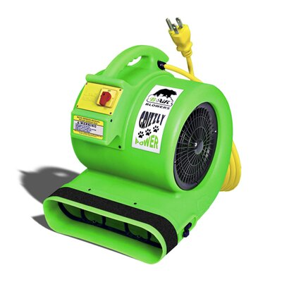 B-Air Blower Air Mover / Blower and Dryer in Green