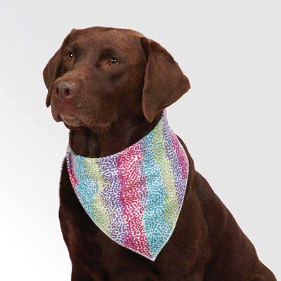 Aria Confetti Collection Bandana
