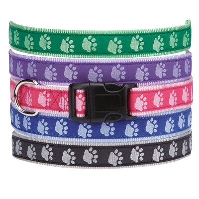 Two Tone Pawprint Dog Collar
