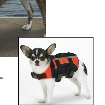 Guardian Gear Aquatic Dog Life Jacket