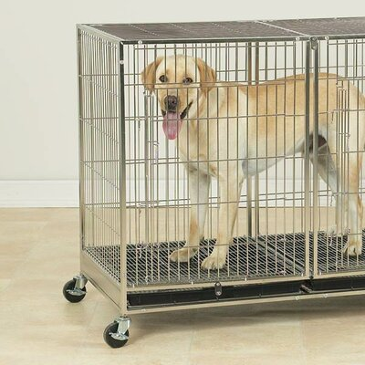 ProSelect X-Tall Modular Dog Cage in Stainless Steel
