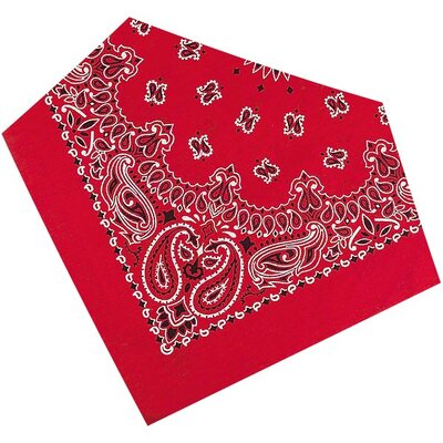 Fashion Bandanna Dog Apparel