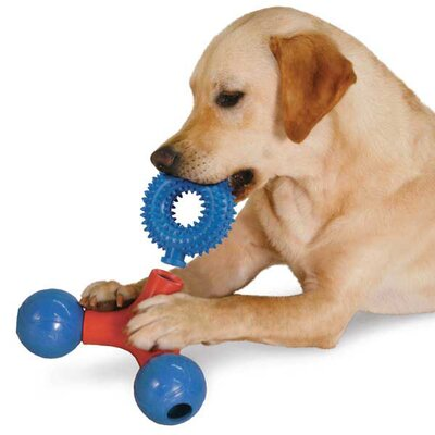Zanies Puzzle Station Nubby Ring Dog Toy