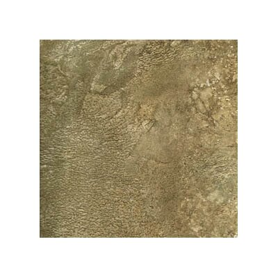 "Avaire Choice 12"" x 12"" Porcelain Tile with Interlocking Tray in Fossil"