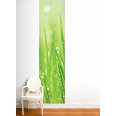 ADZif Unik Morning Dew Wall Decal
