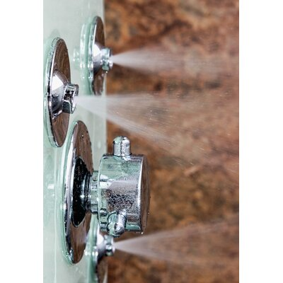 Pulse Showerspas Lanai ShowerSpa Diverter Shower Panel