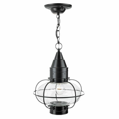 Norwell Lighting Classic Onion 1 Light Outdoor Hanging Lantern
