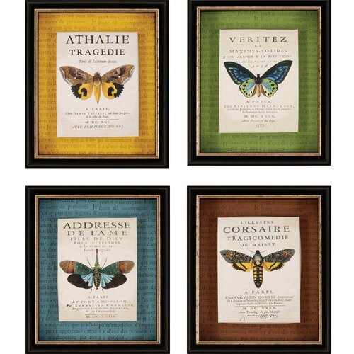 Botanical Butterfly Giclee by Burney 4 Piece Framed Graphic Art Shadow Box Set