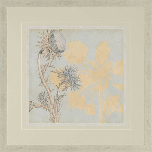 Shadow Floral I by Meagher Framed Graphic Art