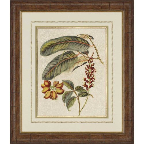 Foliage and Fruit IV Framed Painting Print