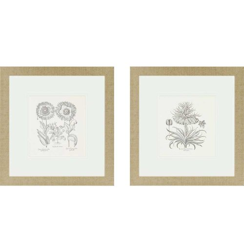 Paragon Flower Impressions Tordilion/Corona 2 Piece Framed Painting Print Set