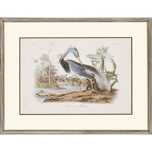 Audubon Herons by Audubon 2 Piece Framed Painting Print Set