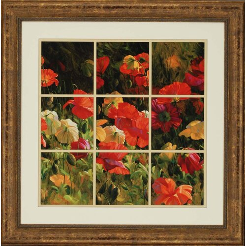 Iceland Poppies by Roulette Framed Graphic Art