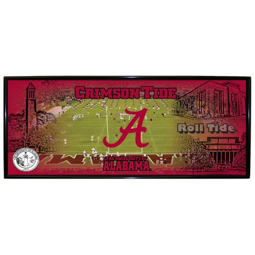 R&R Imports NCAA Mini Panoramic