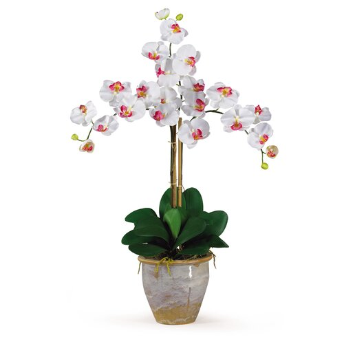 Nearly Natural Triple Phalaenopsis Silk Orchid Arrangement in White
