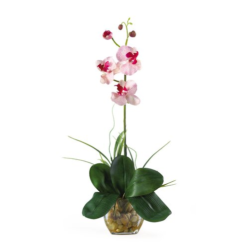 Mini Phalaenopsis Silk Orchid Arrangement in Pink White