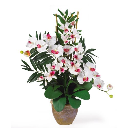 Double Phalaenopsis and Dendrobium Silk Orchid Arrangement in White