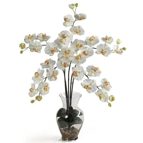 Nearly Natural Liquid Illusion Phalaenopsis Silk Orchid Arrangement in Cream