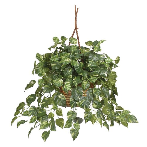 Nearly Natural Silk Pothos Hanging Plant in Basket