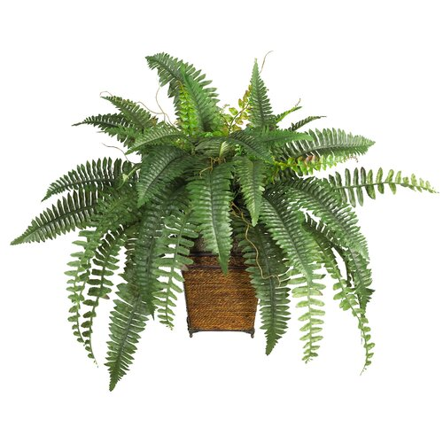 Nearly Natural Silk Boston Fern Desk Top Plant in Pot