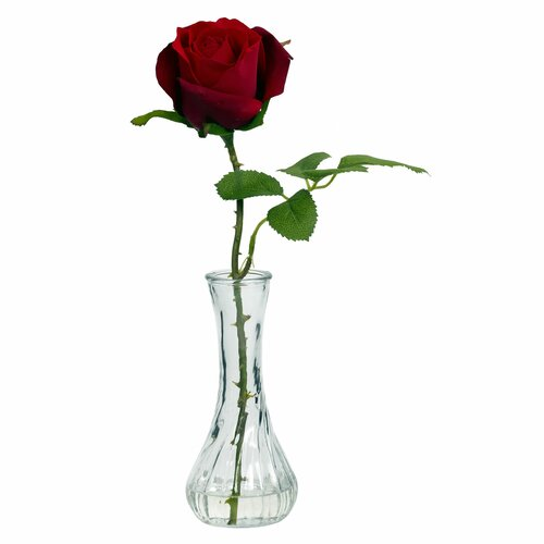Rose with Bud Vase (Set of 3)