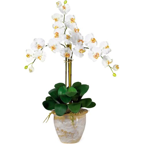 Nearly Natural Triple Phalaenopsis Silk Orchid Arrangement in Cream