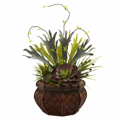Nearly Natural Nearly Natural Succulent Garden Desk Top Plant in Planter