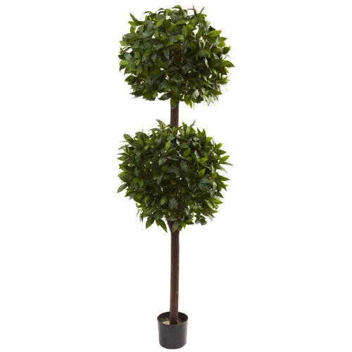 Nearly Natural Sweet Bay Double Ball Topiary in Pot