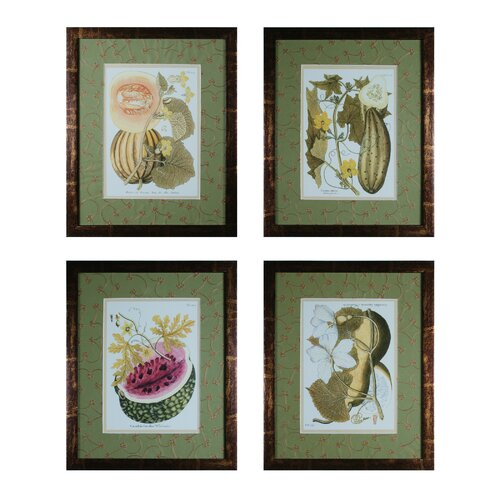 Fruit On The Vine 4 Piece Framed Graphic Art Set