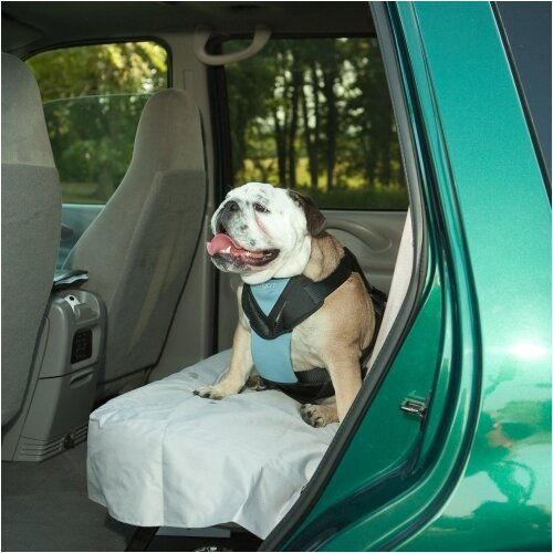 Bergan Pet Products Dog Auto Harness