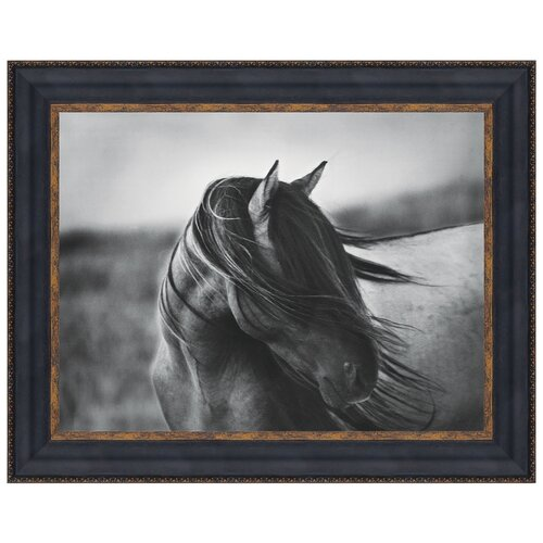 Fierce Grace Wild Stallion Horse by Tony Stromberg Framed Photographic Print