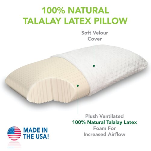 Natural Plush Talalay Latex Pillow
