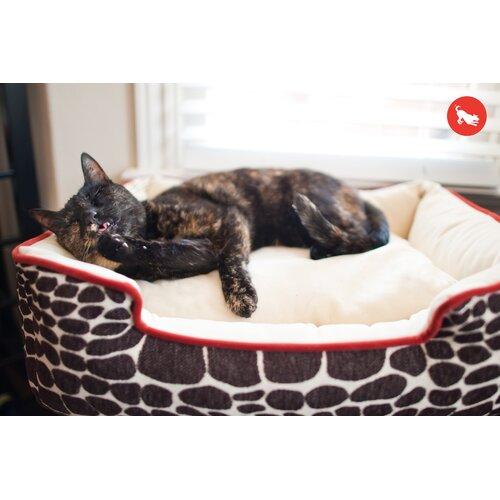 Original Kalahari Lounge Dog Sofa
