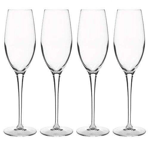Vivendo Champagne Flute (Set of 4)