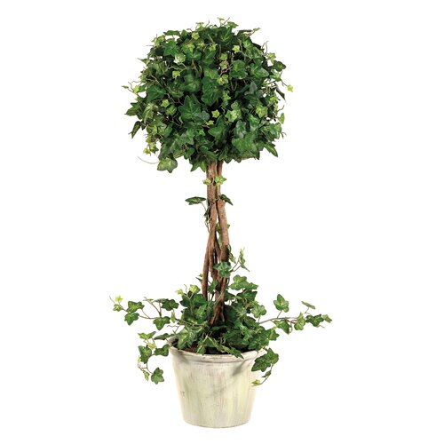 Allstate Floral Curily Plant Ivy Round Tree in Pot