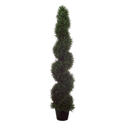 Allstate Floral Rosemary Spiral Plant Round Topiary in Pot