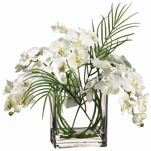 "Allstate Floral 20"" Phalaenopsis with Glass Vase"
